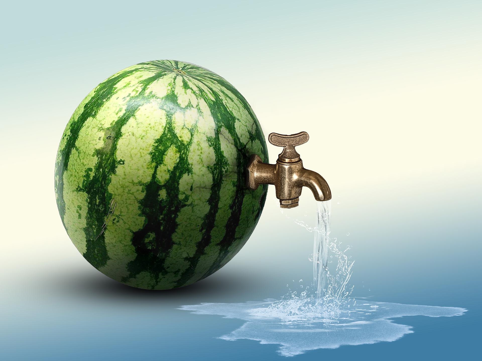 watermelon-3469415_1920jpg