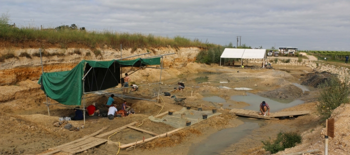 imagenes_Vista_general_de_las_excavaciones_de_Angeac_en_julio_de_2018__Fundacion_Dinopolis_9a1de6c9jpg