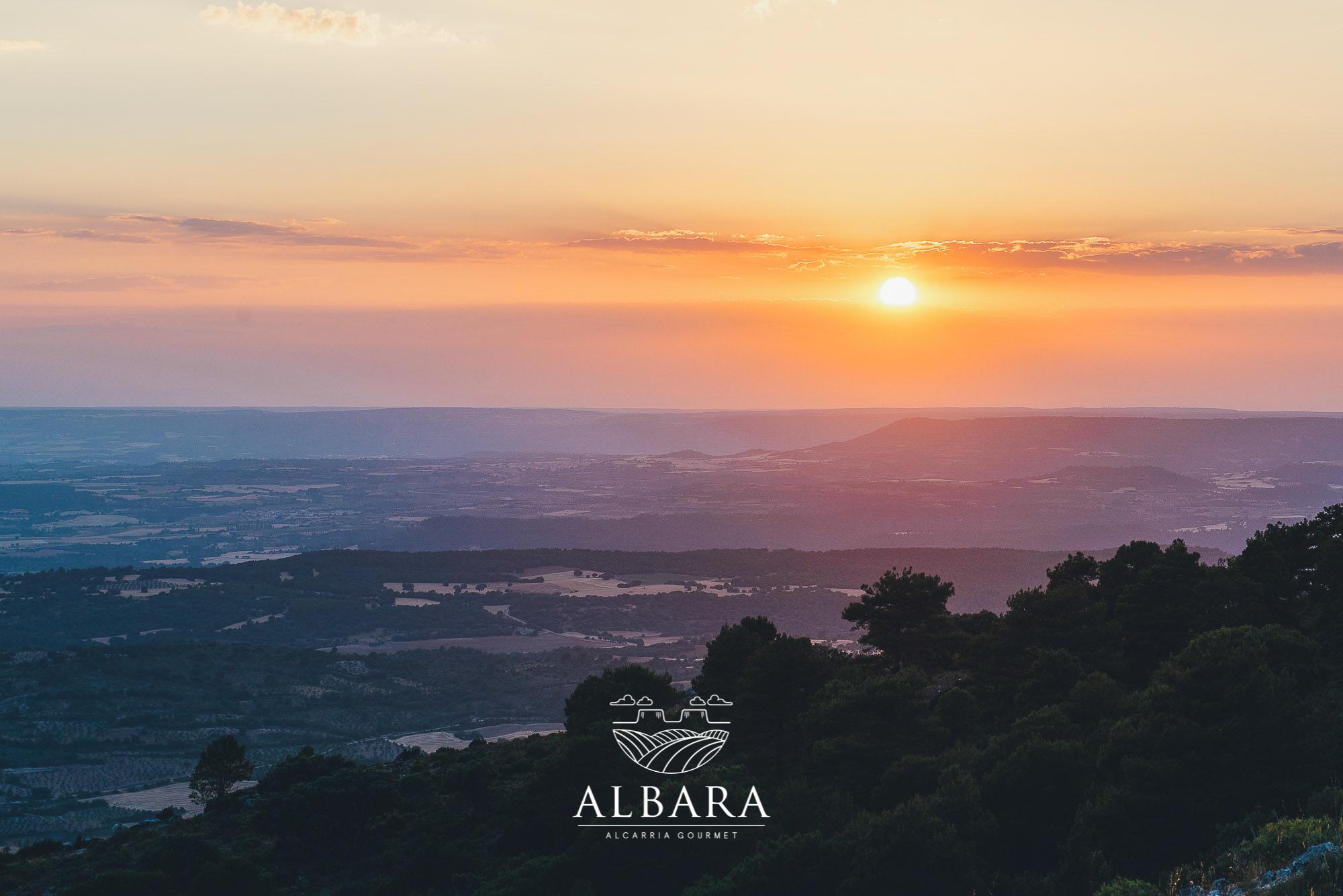albara_6jpg