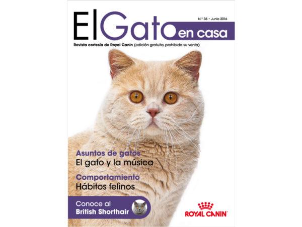 revista-el-gato-38-600x452jpg