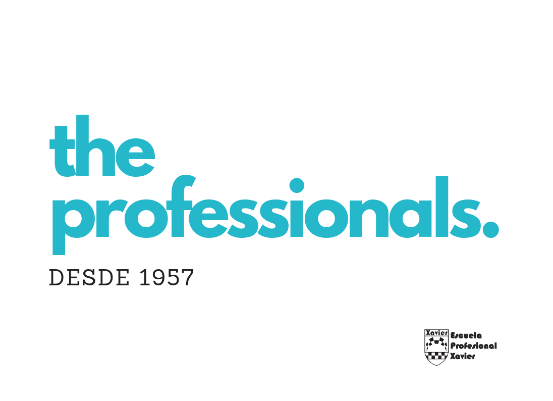 BLOG THE PROFESSIONALS