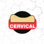 cervicaljpg